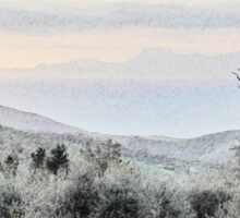 Laureana Cilento: landscape with olive grove Sticker