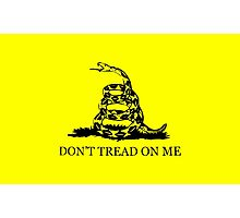 Gadsden flag - Don't tread on me Photographic Print