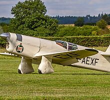 Percival Type E2H Mew Gull G-AEXF taxying in by Colin Smedley