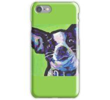 Chihuahua Dog Bright colorful pop dog art iPhone Case/Skin