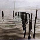 Lake Monroe by Karl F Davis