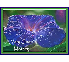 A Very Special Mother Deep Purple Morning Glory Photographic Print