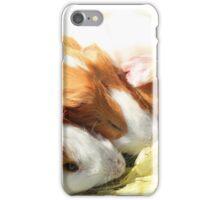 Guinea Pigs in Otavalo iPhone Case/Skin