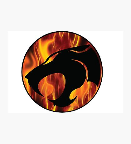 Fire cats Photographic Print