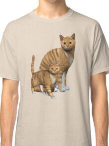 Ginger Tabbies  Classic T-Shirt