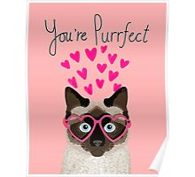 Siamese Cat valentines day love hearts gift for cat lady cute kitten funny cats Poster