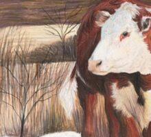 Steer in late winter Sticker