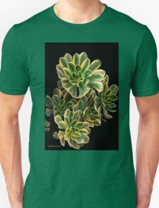 Super Sedum! Unisex T-Shirt
