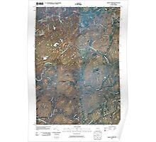 New York NY Albert Marsh 20100126 TM Poster