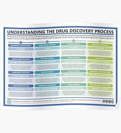 The Drug Discovery Process Poster