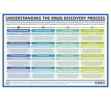 The Drug Discovery Process Photographic Print