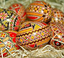 Colorful Easter Eggs by Edmond  Hogge