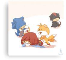 0022 - Sonic Pups Canvas Print