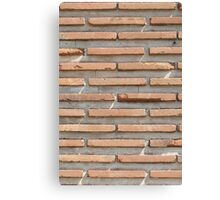 Background of brick wall texture Canvas Print