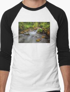 Swiss Glade. Men's Baseball ¾ T-Shirt