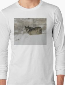 Winter Wolf #3 Long Sleeve T-Shirt