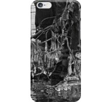 Icy Sculptures from the River iPhone Case/Skin