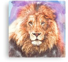 Lion - Pencil and Water Colour Canvas Print