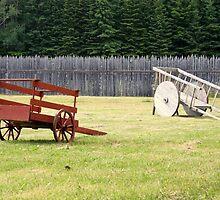 Two Wooden Wheelbarrows by Elizabeth  Lilja