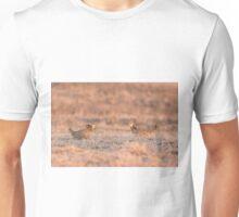 Prairie Chickens 2013-1 Unisex T-Shirt