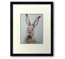 Bunny Wunny Framed Print