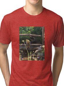 Winnie the Pooh Photograph Tri-blend T-Shirt
