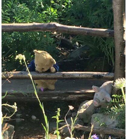 Winnie the Pooh Photograph Sticker