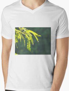 New Zealand Fern Mens V-Neck T-Shirt