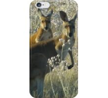 A pair of roos iPhone Case/Skin