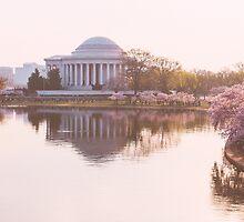 Thomas Jefferson Memorial, Cherry Blossom Festival by tara romasanta