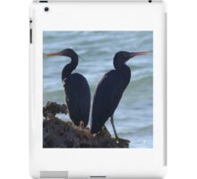 Grey Herons iPad Case/Skin