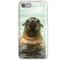 Sea lion iPhone Case/Skin
