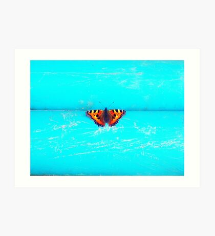 Butterfly - Unique Photography Art Print