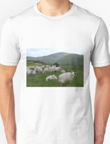 Welsh sheep in the foothills of Snowdon. Unisex T-Shirt