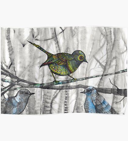little bird little bird Poster
