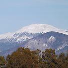 Snow Covered Mountains, Santa Fe, New Mexico by lenspiro