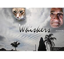 Whiskers  Photographic Print