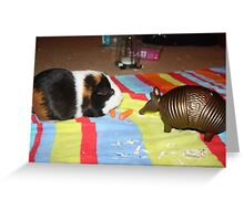 S'mores the Guinea pig Greeting Card