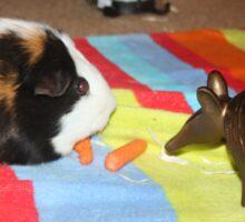 S'mores the Guinea pig Sticker