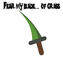 Fear My Blade Photographic Print
