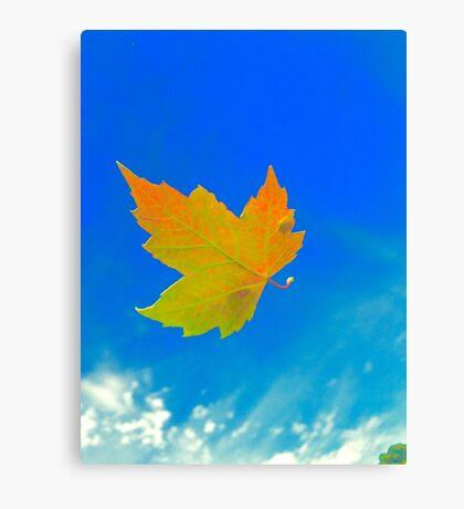 Leaves a'Falling Canvas Print