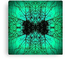 Web of Envy Canvas Print