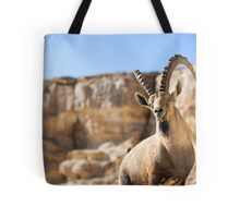 Male Nubian Ibex (Capra ibex nubiana), standing on edge of the Ramon crater, Negev Desert, Israel Tote Bag