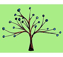 Whimsy Tree Photographic Print