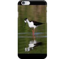 Black Necked Stilt Hunting for Food iPhone Case/Skin