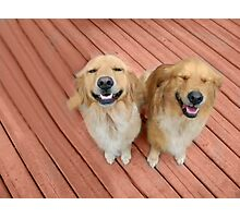 ✿♥‿♥✿   U Sure Do Crack Me UP ..THANKFUL FOR ANIMALS OUR PETS THAT MAKES US SMILE✿♥‿♥✿    Photographic Print