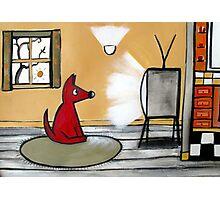 Watch Dog  Photographic Print
