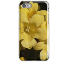 Yellow Carolina Jasmine Blossom Close Up iPhone Case/Skin