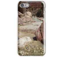 Wadi Zered (Wadi Hassa or Hasa) in western Jordan. A sand stone canyon with fresh running water. iPhone Case/Skin