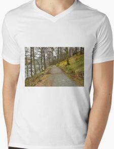 Buttermere Walks Mens V-Neck T-Shirt